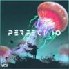 Perfect 10 (Unknown Brain & RudeLies VIP)